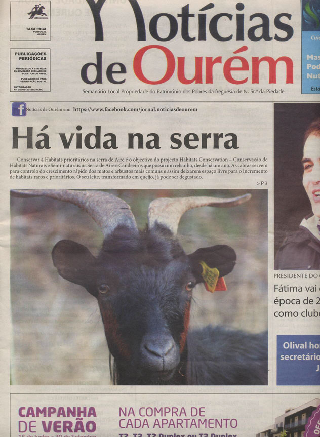Noticias-de-Ourém_16-08-2013-1